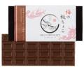 梅の板ちょこ(ミルクチョコレート)