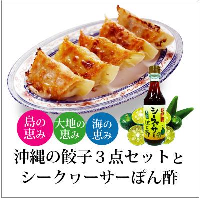 【送料無料】 沖縄特選!うまい!餃子セットとシークワーサーぽん酢