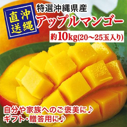 沖縄県産マンゴー10kg