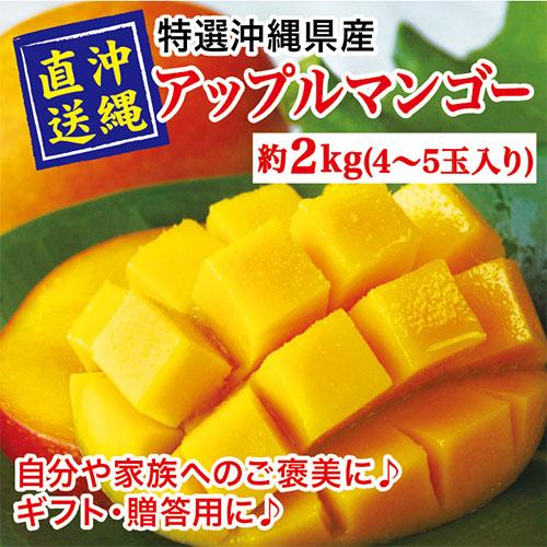沖縄県産完熟マンゴー2kg