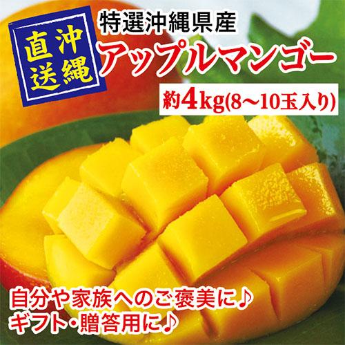 マンゴー4kg