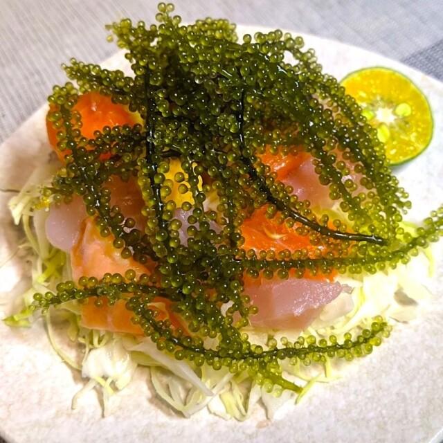 うちなー海鮮サラダ