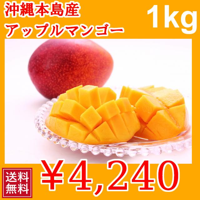 甘くておいしい 沖縄本島産 完熟マンゴー 沖縄産 1kg | 送料無料 | 分納 | 1005690055087