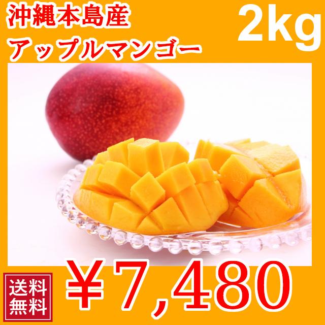 甘くておいしい 沖縄本島産 完熟マンゴー 沖縄産 2kg | 送料無料 | 分納 | 1005690055094