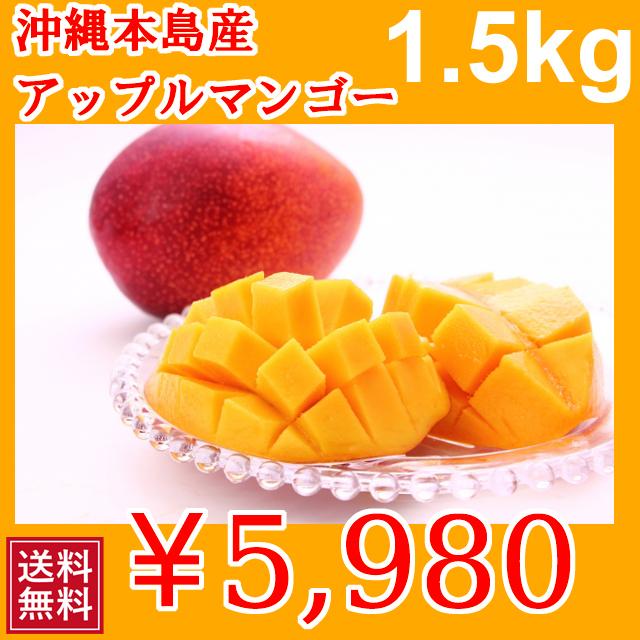 甘くておいしい 沖縄本島産 完熟マンゴー 沖縄産 1.5kg | 送料無料 | 分納 | 1009280000617