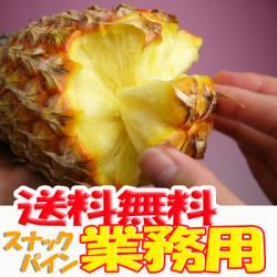 【送料無料】業務用,お徳用 沖縄産スナックパイン20kg前後(16~30個)産直価格!でお届け♪TVで話題のパイナップル