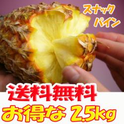 【送料無料】沖縄産スナックパイン2.5kg前後(2~4個)産直価格!でお届け♪TVで話題のパイナップル