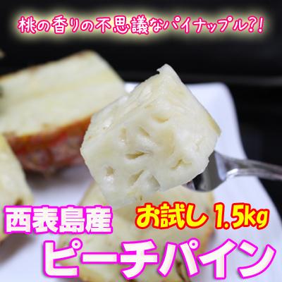 【送料無料】沖縄産ピーチパイン(ソフトタッチ)1.5kgサイズ2~4個 沖縄産パイナップル 西表島産 旬 産地直送 沖縄土産