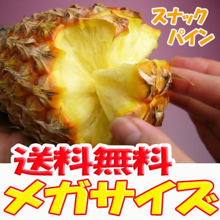 【送料無料】沖縄産スナックパイン5.0kg前後(4~8個)産直価格!でお届け♪TVで話題のパイナップル