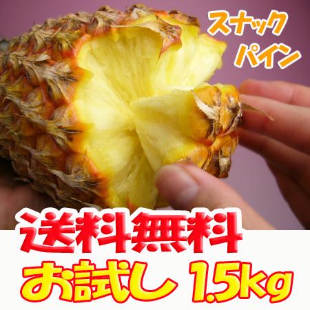 【送料無料】沖縄産スナックパイン1.5kg前後(2~3個)産直価格でお届け♪TVで話題のパイナップル