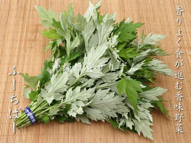 フーチバー(沖縄食用よもぎ) 沖縄の島野菜