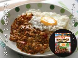 ガパオライスの素 調理例