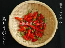 コーレーグス(島唐辛子)
