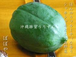 パパイヤ 沖縄の島野菜