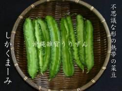 シカクマメ(四角豆) 沖縄の島野菜