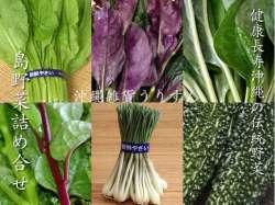 沖縄の島野菜セット 伝統野菜