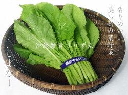 シマナー(島菜) 沖縄の島野菜
