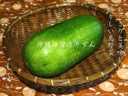 シブイ(冬瓜)沖縄の島野菜