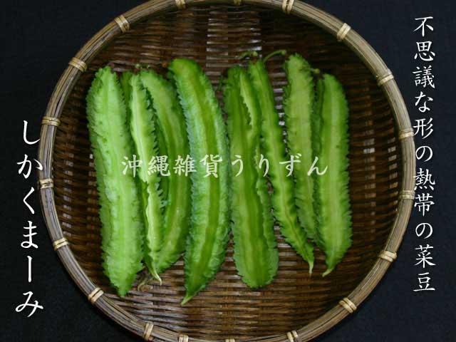四角豆 野性味の有る菜豆