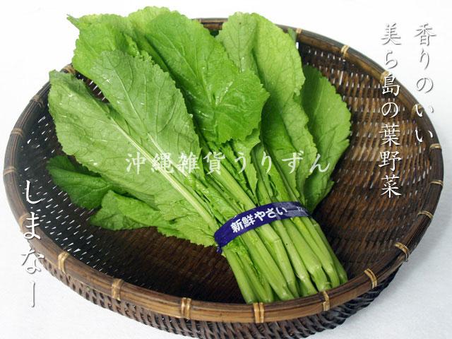 シマナー(島菜)沖縄の島野菜