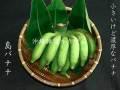 沖縄の島バナナ