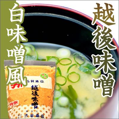 【渋谷商店の渋谷味噌】特撰つぶ 白味噌風 1kg
