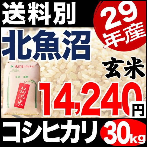 【地域限定】29年産新潟県北魚沼産コシヒカリ 30kg 小分け6袋【送料別】