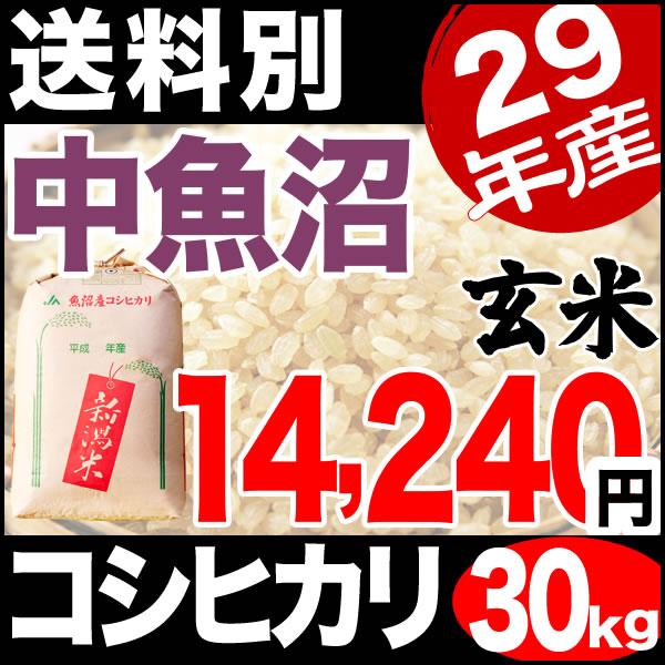 【地域限定】29年産新潟県中魚沼産コシヒカリ 30kg 小分け6袋【送料別】