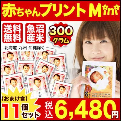【30年産魚沼産コシヒカリ】 抱っこできる赤ちゃんプリントmini300g×11個セット