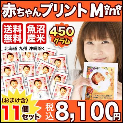 【30年産魚沼産コシヒカリ】 抱っこできる赤ちゃんプリントmini450g×11個セット