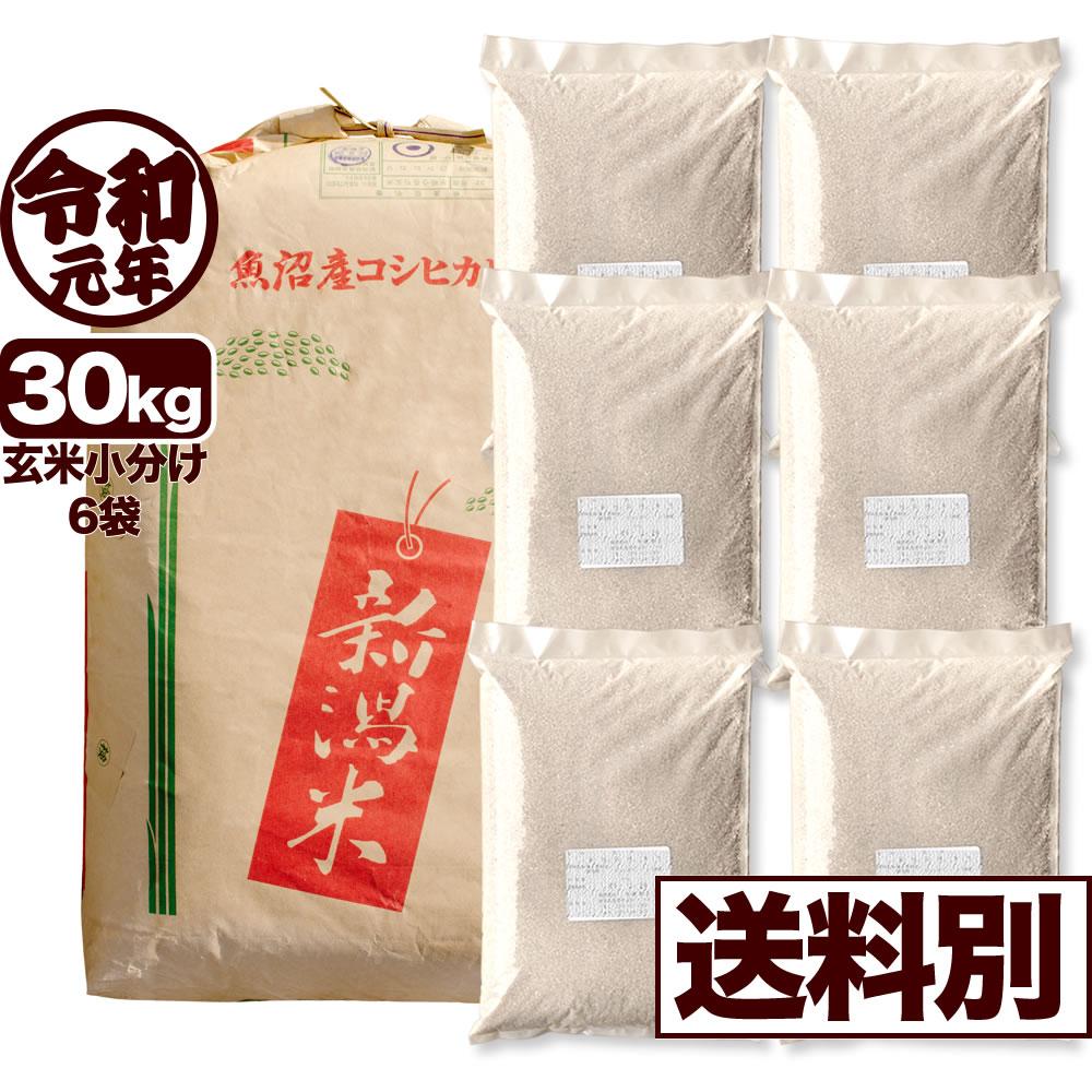 【新米】令和元年産 新潟県中魚沼産コシヒカリ 30kg 小分け6袋【一等米使用】【送料別】
