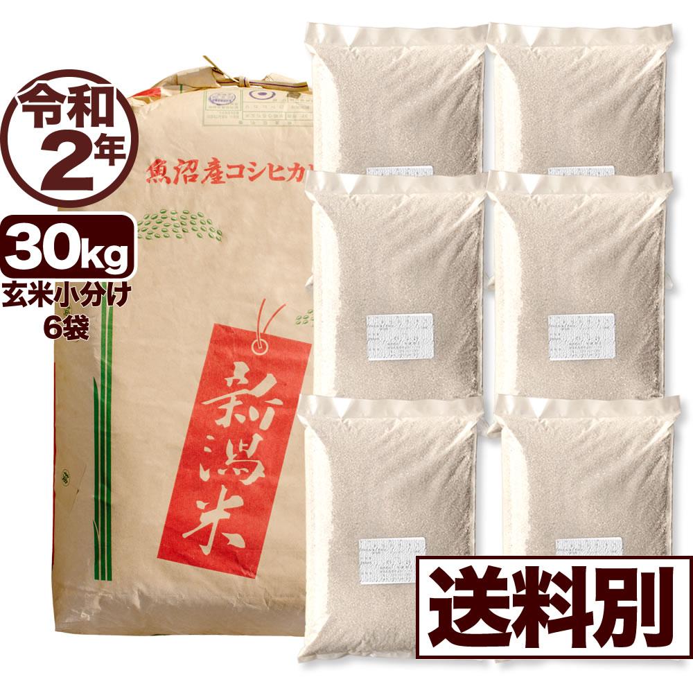 【地域限定】令和2年産新潟県北魚沼産コシヒカリ 30kg 小分け6袋【送料別】