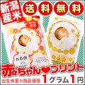 【29年産新潟県産こしいぶき】抱っこできる 赤ちゃんプリント ♪ 【送料無料】