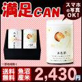【満足CAN】29年産魚沼産コシヒカリ 300g×2個【送料無料(一部地域除く)】
