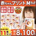【29年産魚沼産コシヒカリ】 抱っこできる赤ちゃんプリントmini450g×11個セット