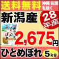 新米28年産新潟県産ひとめぼれ5kg