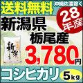 新米28年産新潟県栃尾産コシヒカリ5kg