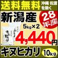 新米28年産新潟県産キヌヒカリ10kg