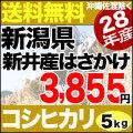 28年新米新潟県上越市新井産はさかけコシヒカリ5kg
