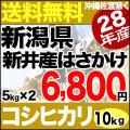新米28年産新潟県新井産 自然乾燥 はさかけコシヒカリ10kg
