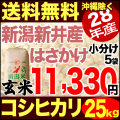 【地域限定】28年産新潟県産自然乾燥コシヒカリ あらいのはさかけ 25kg