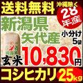 【地域限定】28年産新潟県矢代産コシヒカリ玄米 25kg