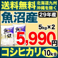29年産 産直 魚沼産コシヒカリ 10kg(5kg×2)