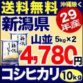 【新米】29年産新潟県産コシヒカリ 山並 10kg(5kg×2)