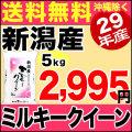 【新米】29年産新潟県産ミルキークイーン 5kg
