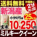 【新米】29年産新潟県産ミルキークイーン玄米 25kg
