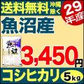 29年産 産直 魚沼産コシヒカリ 5kg