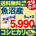 【新米】29年産 産直 魚沼産コシヒカリ 10kg(5kg×2)