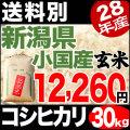 【地域限定】28年産新潟県小国産コシヒカリ玄米 30kg【送料別】