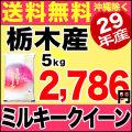 29年産栃木県産ミルキークイーン 5kg